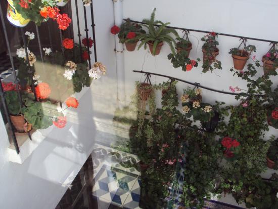 Casa de las Mercedes : Courtyard