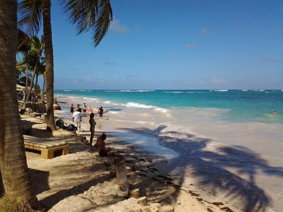VIK Hotel Cayena Beach: la spiaggia di fronte
