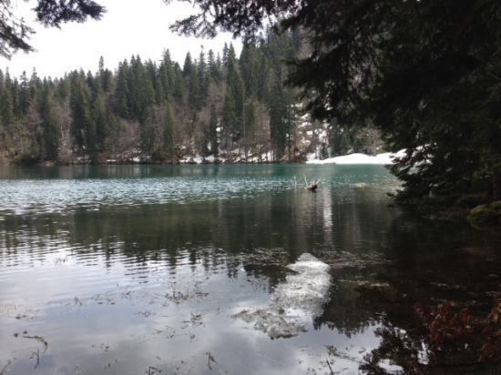 Mojkovac, Montenegro: The Lake