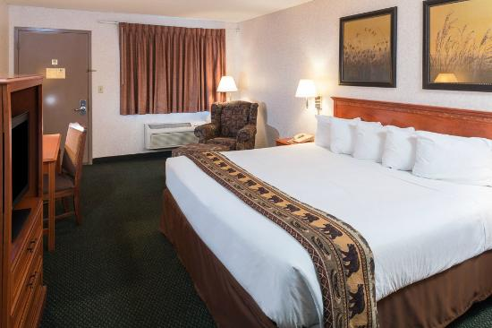 Oasis Inn: Guest Room with King Bed
