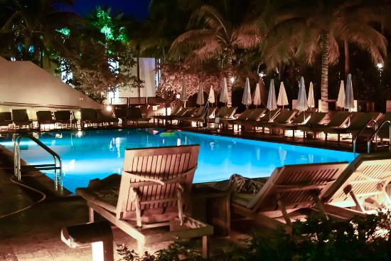 Royal Palm South Beach Miami A Tribute Portfolio Resort 24 Hour Pool Hot