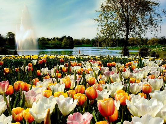 Chicago's North Shore, IL: Chicago Botanic Garden