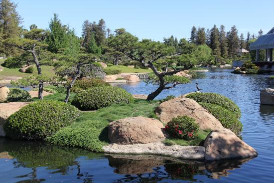 Japanese Garden Van Nuys Picture Of The Japanese Garden Los Angeles Tripadvisor