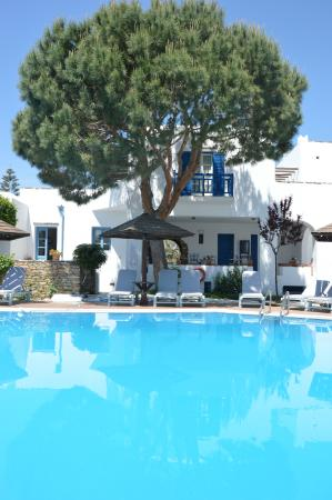 Alkyoni Beach Hotel: piscine