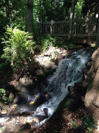 Hatcher Garden & Woodland Preserve: Waterfall at hatcher