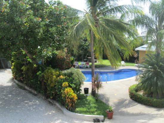 Hotel La Punta : Piscina y zonas verdes
