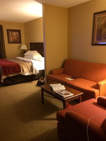 Comfort Inn : photo0.jpg
