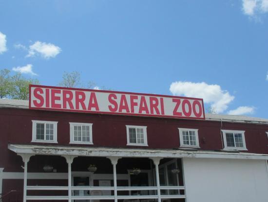 Sierra Nv: Peacock, Sierra Safari Zoo, Reno, NV
