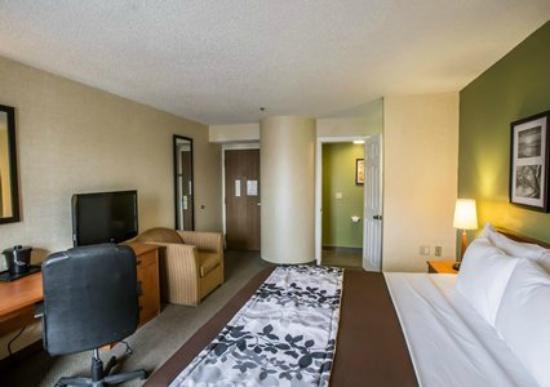 Sleep Inn Hotel   Lansing
