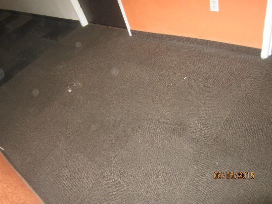 Motel 6 Denver South - South Tech Center: hallway outside room