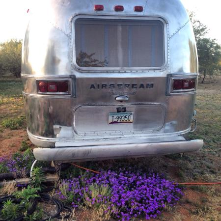 La Siesta Campgrounds : Airstream butt with flowers