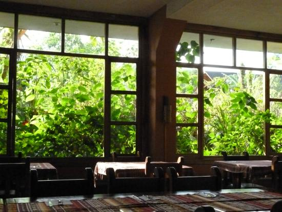 Bio Hostal Mindo Cloud Forest : Comedor