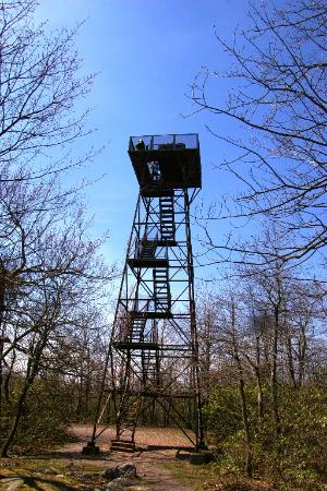 ‪‪Somerset‬, بنسيلفانيا: Lookout Tower‬
