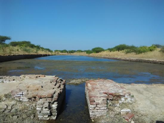 dockyard of harappan civilization