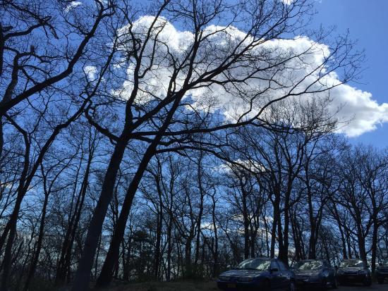 Harriman State Park: photo3.jpg