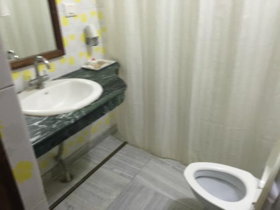 Hotel Great Ganga: bathroom