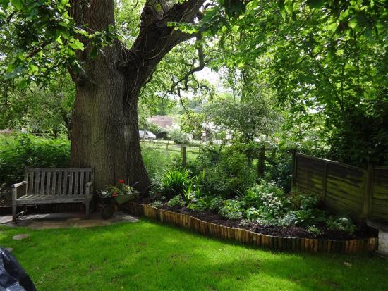 Bed And Breakfast In The New Forest Burley