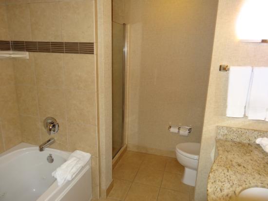 Hilton Garden Inn Clovis: バスルーム