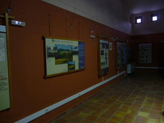 East Macedonia and Thrace, Grekland: In the Visitor Centre 2