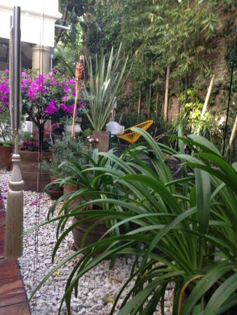 Hotel Villa Condesa照片