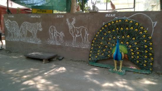 Udaipur Zoo: Paintings
