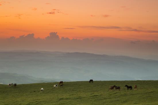 panorama sul monte subasio - Picture of La Terrazza del Subasio ...