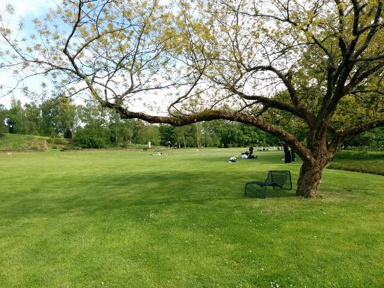Höhenpark Killesberg: Killesberg Park