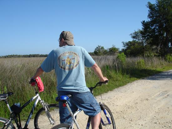 Lower Suwannee National Wildlife Refuge: Shell road near the cane launch.
