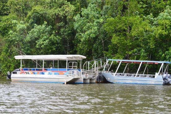 Bruce Belcher's Daintree River Cruises