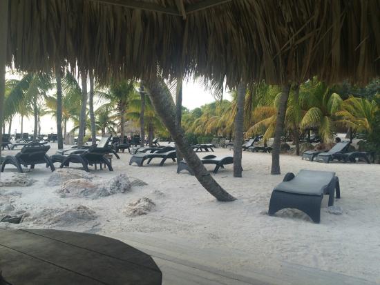 Frangipani Apartments Curacao: Tipp: Lions Dive & Beach Resort