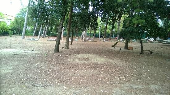 Parco Dei Conigli