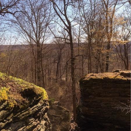 Hinckley Reservation: Whip's ledges