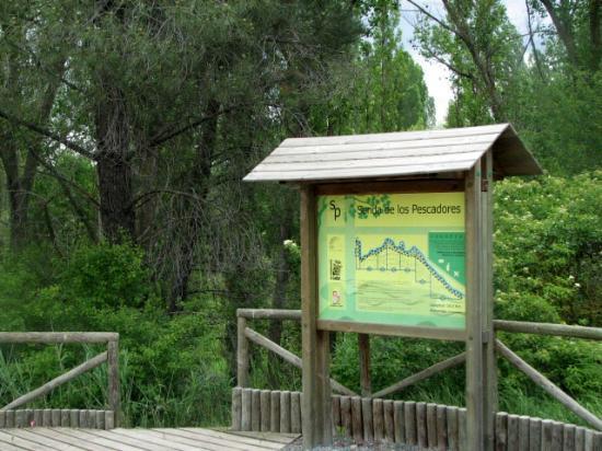 Río Cega, Senda de los Pescadores, Cuéllar.