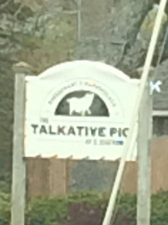 The Talkative Pig