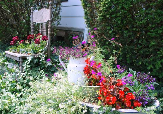 Olde Buffalo Inn B&B : Beautiful garden in any season