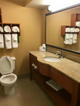Hampton Inn Salisbury: Bathroom Room 307