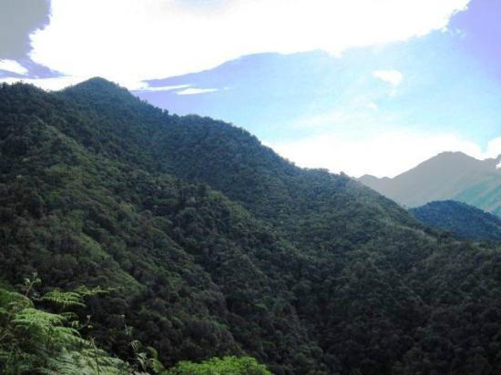 Talamanca Reserve: View