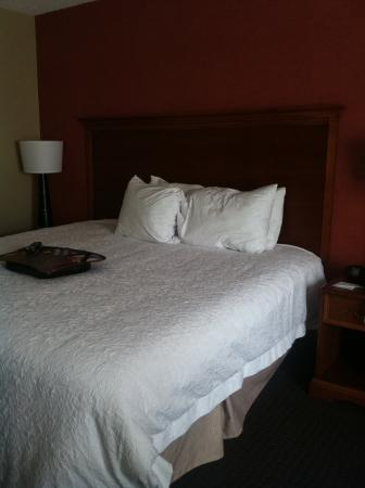 Hampton Inn Columbus Airport: The pathetically small pillows on a king size bed???