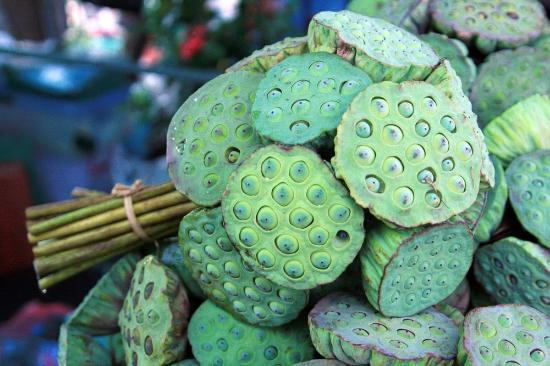 Fresh Lotus Seed Pod Sale In Surin Market Picture Of Surin