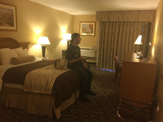 Best Western Clifton Park: Large room