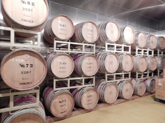 Noto Wine: 能登ワイン工場見学 ワイン貯蔵庫