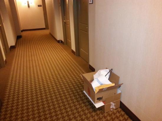 Sheraton Houston West: Trash in hallway