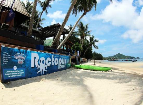 Roctopus潛水