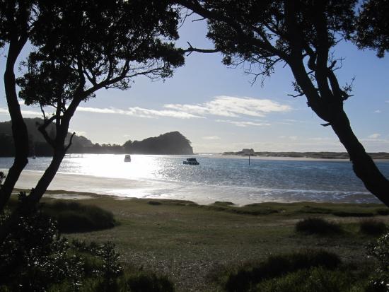 Mangawhai Heads Holiday Park: Perfect quiet spot