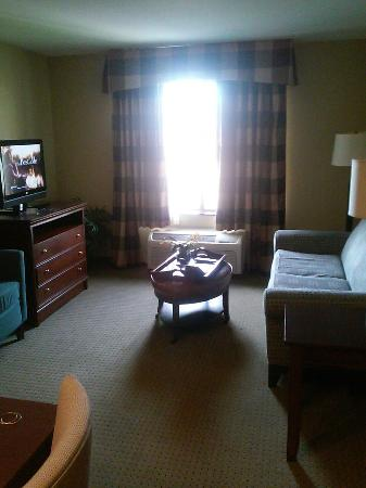 Homewood Suites by Hilton Fresno : Living room
