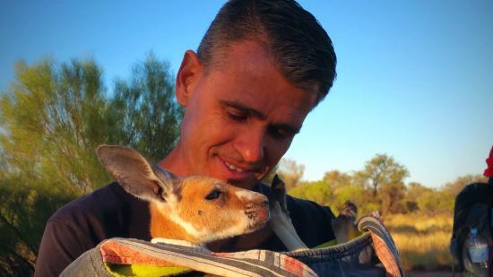 Cute Little Joey Called Bob Picture Of The Kangaroo Sanctuary - Kangaroo sanctuary alice springs