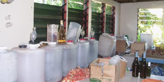 Koteka Winery: All ready to go