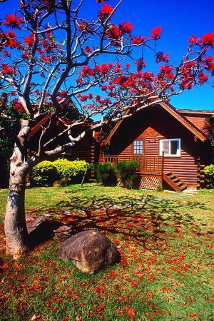Kentington Resort : 自然的度假天堂