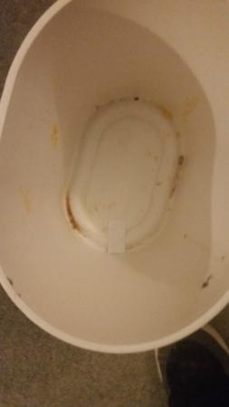 The Godley Hotel: Mould and Old Food in Bin