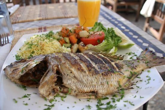 Holiday Services - Day Tours: Day trip to Essaouira -  my lunch by the sea